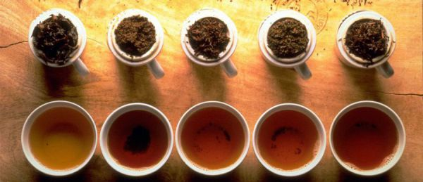 Разные сорта чая