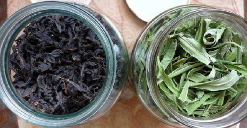 Ферментированные и неферментированные листья кипрея