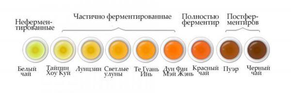 Степени ферментации