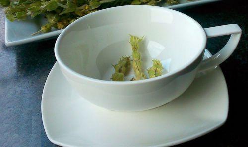 Чашка мурсальского чая