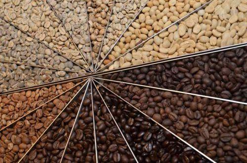 Цвета обжаренных кофейных зерен