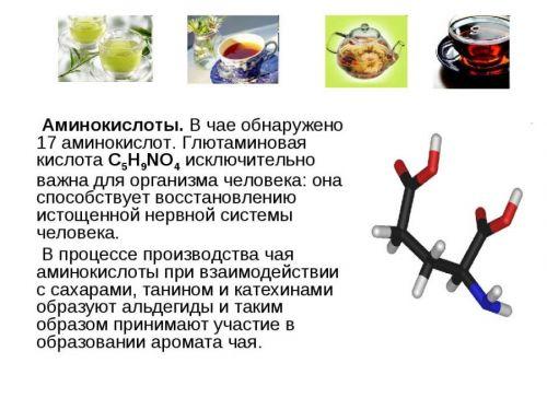 Аминокислоты в чае