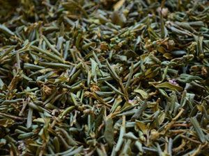 Чай Саган Дайля